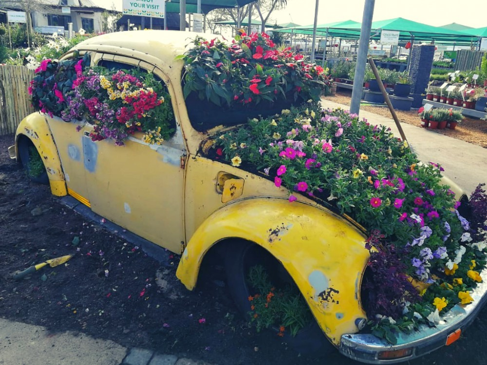 ZANY AND COLORFUL GARDEN INSPIRATION